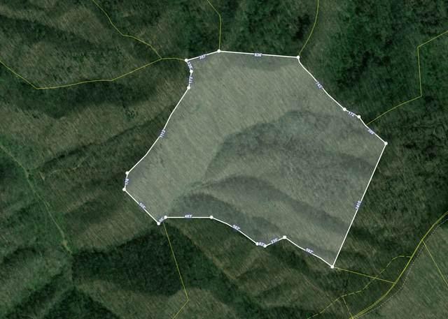 Tbd Light Road, Rogersville, TN 37857 (MLS #9905751) :: Highlands Realty, Inc.