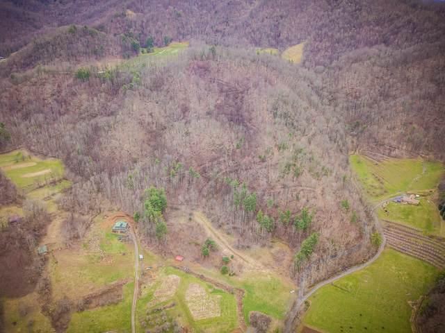 00000 Coffee Ridge Loop, Erwin, TN 37650 (MLS #9906009) :: Bridge Pointe Real Estate