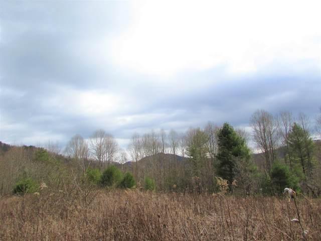 Tbd Heaton Branch Road, Butler, TN 37640 (MLS #9906047) :: Highlands Realty, Inc.