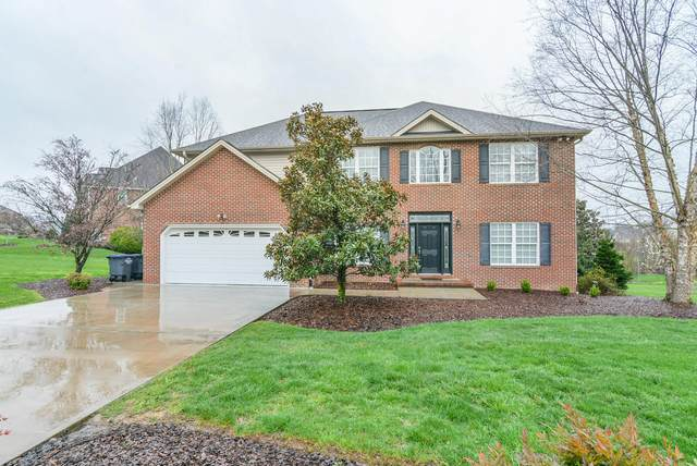 3009 Wandering Drive Drive, Kingsport, TN 37660 (MLS #9906080) :: Tim Stout Group Tri-Cities