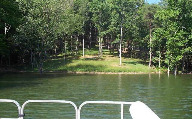 217 Toqua Lane, Mooresburg, TN 37811 (MLS #9906115) :: Highlands Realty, Inc.