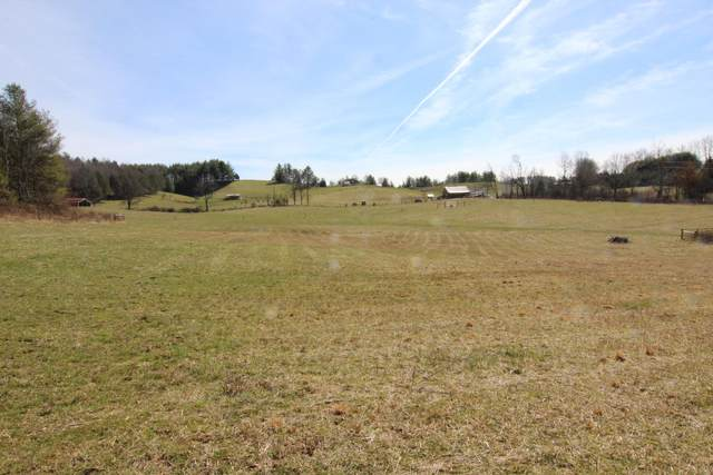 000 Star Gap Road, Mountain City, TN 37683 (MLS #9906202) :: Conservus Real Estate Group
