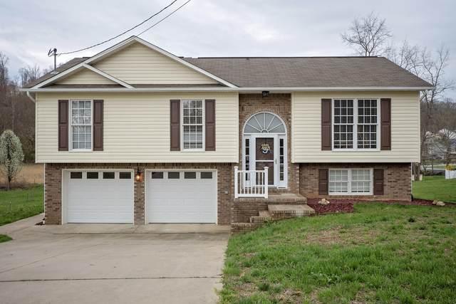 181 Hunters Run Lane, Mount Carmel, TN 37645 (MLS #9906225) :: Conservus Real Estate Group