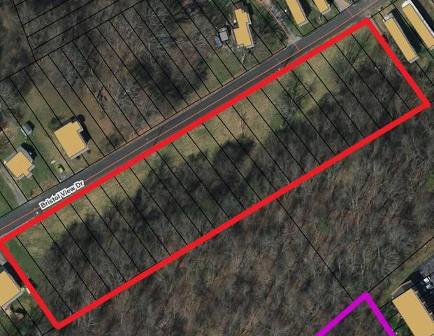 Tbd Bristol View Drive, Bristol, VA 24201 (MLS #9906299) :: Conservus Real Estate Group