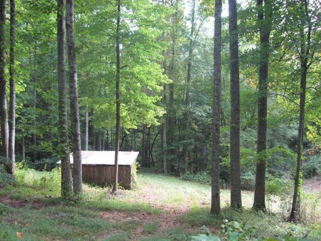 369 Fork Mountain Road, Roan Mountain, TN 37687 (MLS #9906367) :: Bridge Pointe Real Estate