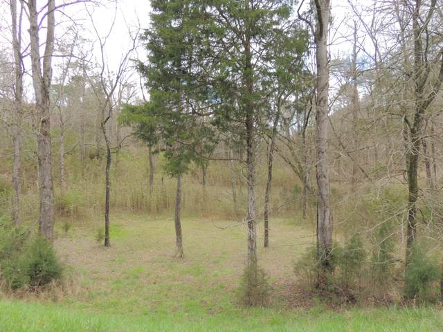 216 Walnut Bend Drive, Whitesburg, TN 37891 (MLS #9906378) :: Highlands Realty, Inc.