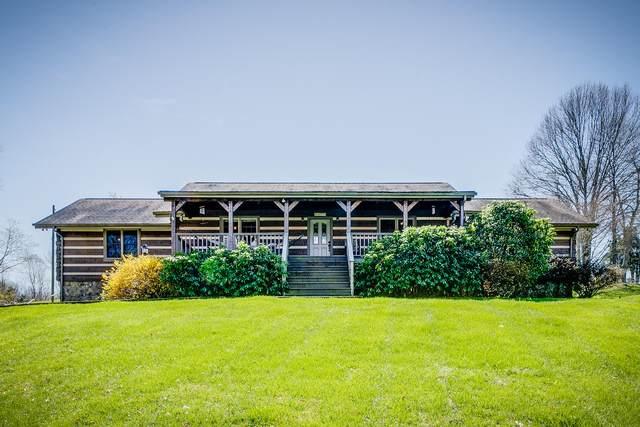 115 Kingston Court, Gray, TN 37615 (MLS #9906419) :: The Baxter-Milhorn Group