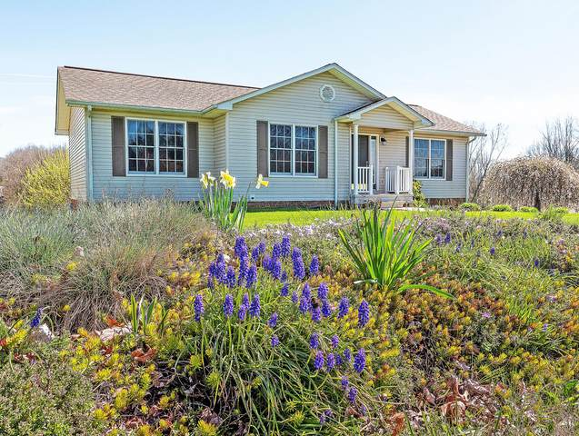 16502 Hearl Drive Drive, Abingdon, VA 24210 (MLS #9906427) :: Highlands Realty, Inc.