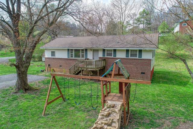 508 Lucy Road, Kingsport, TN 37660 (MLS #9906468) :: Conservus Real Estate Group