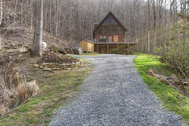 206 Black Bear Ridge, Roan Mountain, TN 37687 (MLS #9906477) :: Bridge Pointe Real Estate