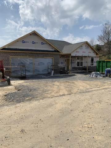 1110 Lemongrass Drive, Jonesborough, TN 37659 (MLS #9906479) :: The Baxter-Milhorn Group
