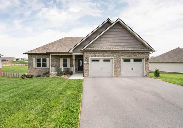 1341 Peaceful Drive, Jonesborough, TN 37659 (MLS #9906514) :: Conservus Real Estate Group