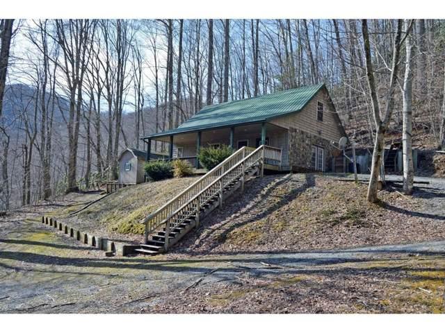 230 Black Bear Ridge, Roan Mountain, TN 37687 (MLS #9906527) :: Bridge Pointe Real Estate