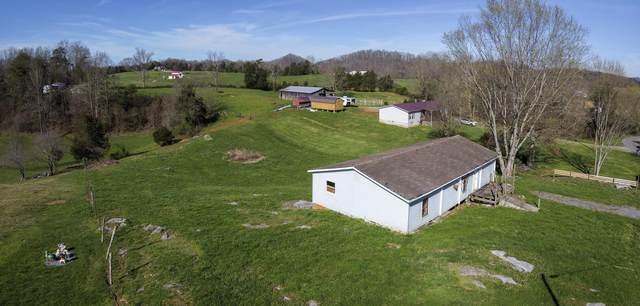 1217 Timber Ridge Road, Bluff City, TN 37618 (MLS #9906546) :: Bridge Pointe Real Estate