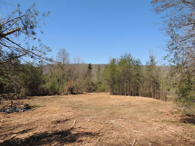 Off Beech Creek Road, Rogersville, TN 37857 (MLS #9906551) :: Highlands Realty, Inc.