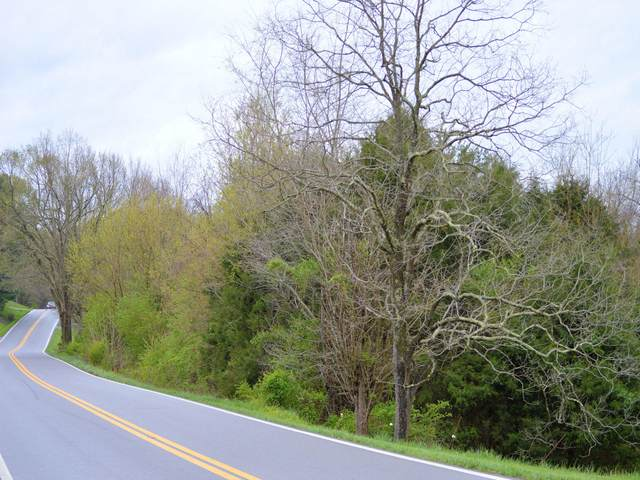 3605 Kingsport Highway, Afton, TN 37616 (MLS #9906570) :: Highlands Realty, Inc.