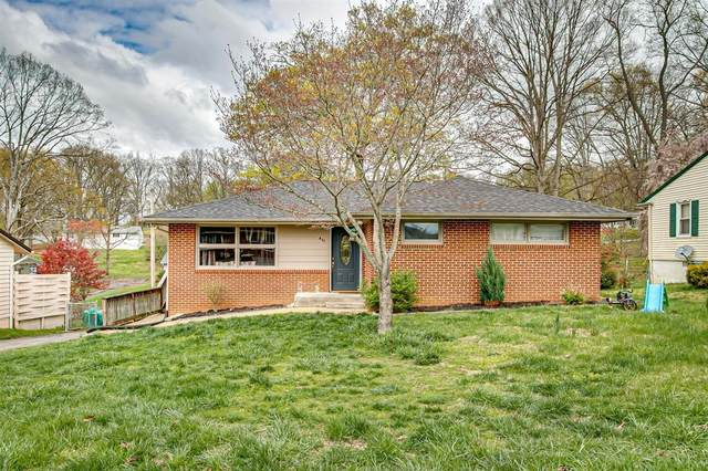 411 Holly Street, Mount Carmel, TN 37645 (MLS #9906596) :: Conservus Real Estate Group