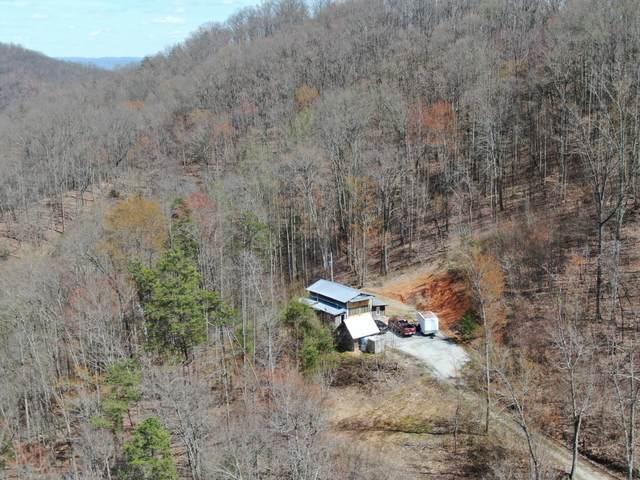 421 Grouse Run Road, Sneedville, TN 37869 (MLS #9906646) :: Conservus Real Estate Group