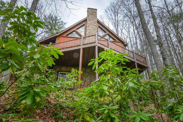 232 Lakeside Drive, Butler, TN 37640 (MLS #9906648) :: Conservus Real Estate Group