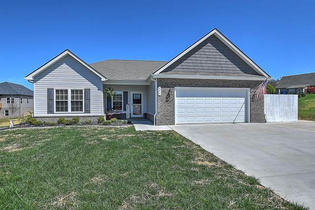 888 Ashley Meadows, Jonesborough, TN 37659 (MLS #9906661) :: Conservus Real Estate Group