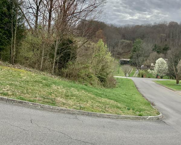 13 Highland Meadows Drive, Blountville, TN 37617 (MLS #9906682) :: Highlands Realty, Inc.