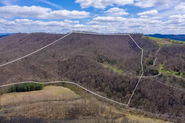 2184 Chestnut Ridge Road, Dungannon, VA 24245 (MLS #9906697) :: Highlands Realty, Inc.