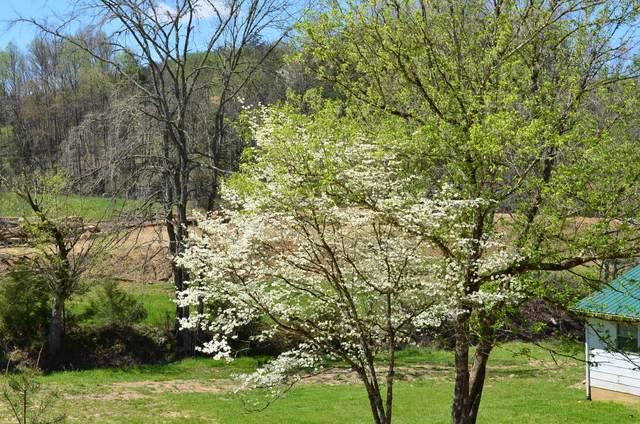 260 Shepard Lane, Thorn Hill, TN 37881 (MLS #9906894) :: Highlands Realty, Inc.