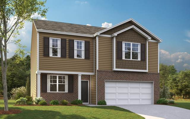 3141 Phillips Way, Kingsport, TN 37660 (MLS #9907006) :: Highlands Realty, Inc.
