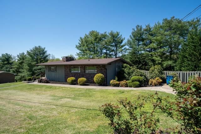 171 Hawk Street, Blountville, TN 37617 (MLS #9907055) :: Highlands Realty, Inc.