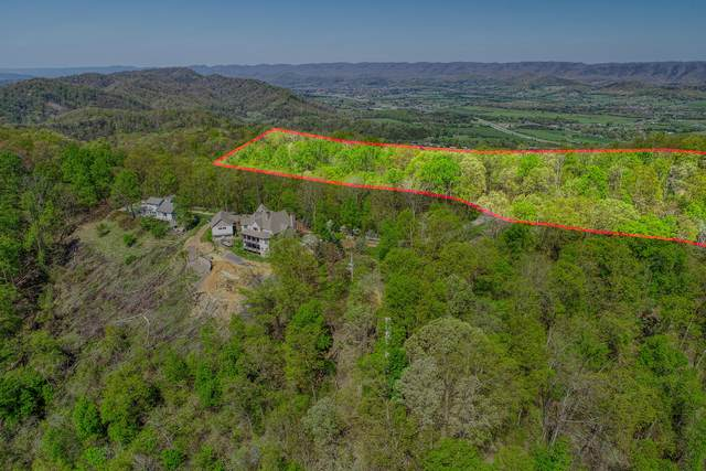 00 Proffitt Ridge Road, Mooresburg, TN 37811 (MLS #9907110) :: Conservus Real Estate Group