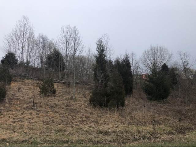 Tbd Scott Lane, Bristol, TN 37620 (MLS #9907213) :: Highlands Realty, Inc.