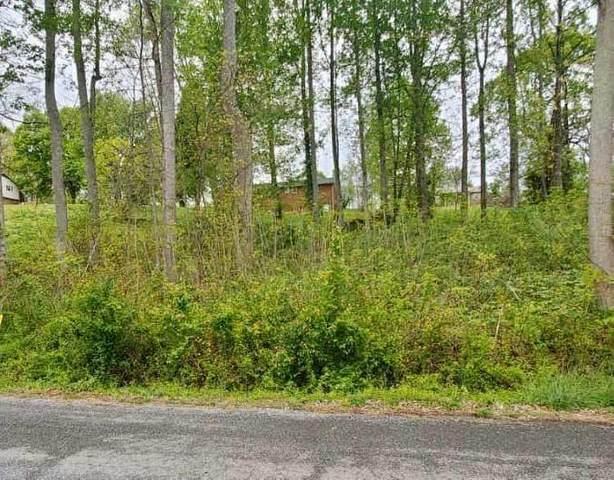 Tbd Santa Fe Street, Church Hill, TN 37642 (MLS #9907265) :: Tim Stout Group Tri-Cities