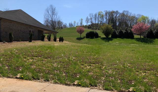 1100 Embassy Row, Johnson City, TN 37601 (MLS #9907319) :: Highlands Realty, Inc.