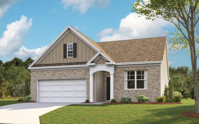 3132 Phillips Way, Kingsport, TN 37660 (MLS #9907499) :: Conservus Real Estate Group