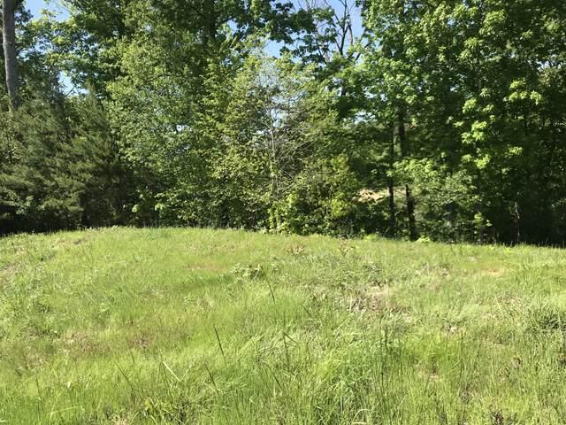 Lot 14 Cypress Drive, Dandridge, TN 37725 (MLS #9907542) :: Highlands Realty, Inc.