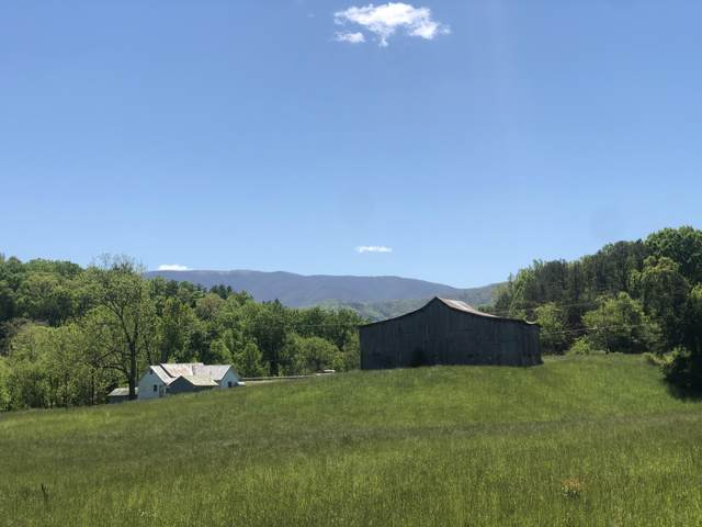 6385 Erwin Hwy Highway, Chuckey, TN 37641 (MLS #9907744) :: Conservus Real Estate Group
