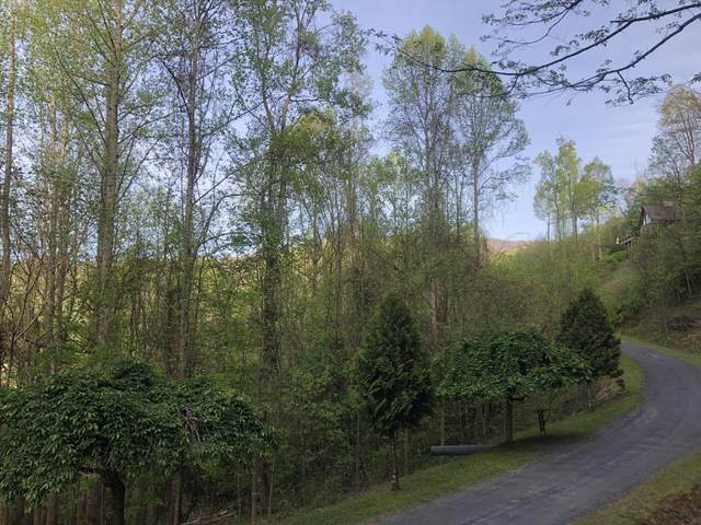 Tbd Roan Springs Lane, Roan Mountain, TN 37687 (MLS #9907755) :: The Lusk Team