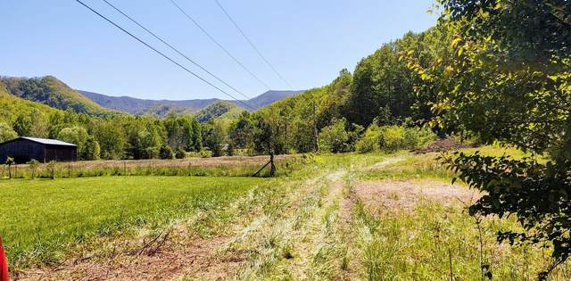 462 Horse Creek Road, Chuckey, TN 37641 (MLS #9907775) :: Conservus Real Estate Group