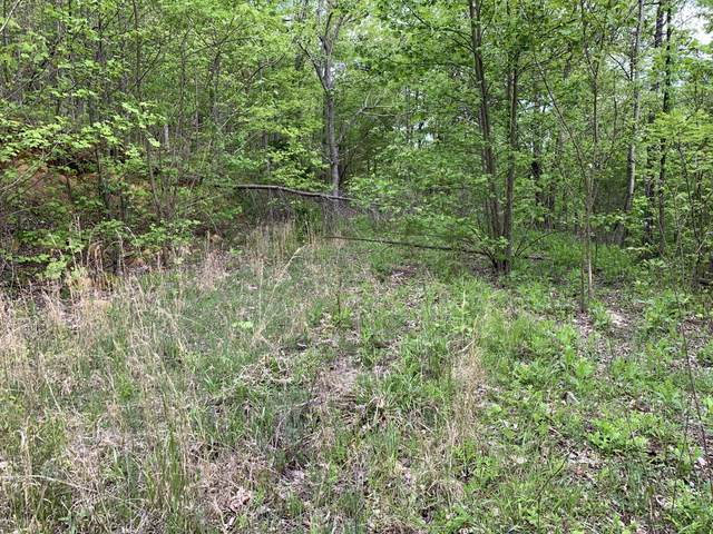 170 Fire Tower Road, Mooresburg, TN 37811 (MLS #9907791) :: Highlands Realty, Inc.