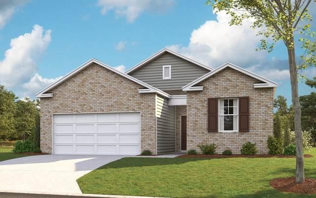 3128 Phillips Way, Kingsport, TN 37660 (MLS #9907831) :: Highlands Realty, Inc.