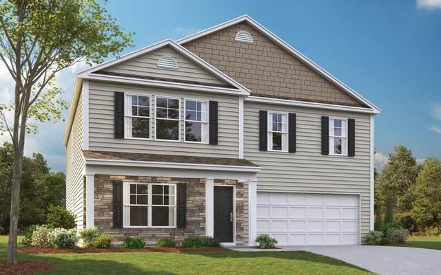 3124 Phillips Way, Kingsport, TN 37660 (MLS #9907838) :: Conservus Real Estate Group
