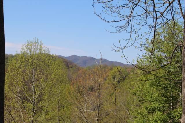 000 Old Forge Creek Road, Mountain City, TN 37683 (MLS #9907859) :: Bridge Pointe Real Estate