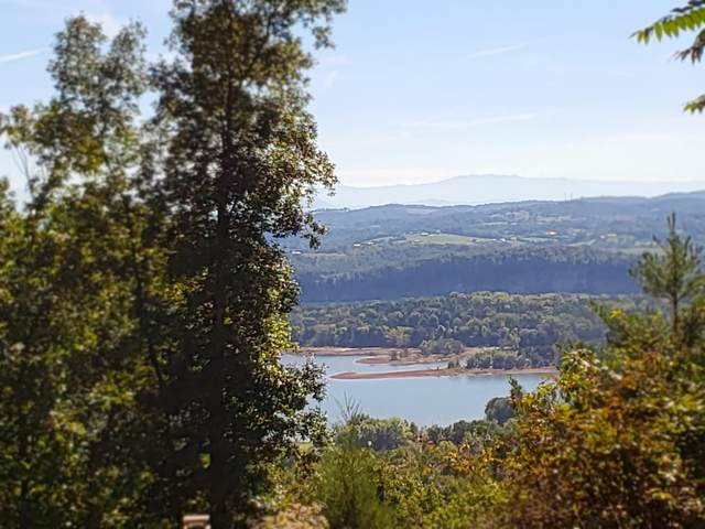 Lot 216 Harbor View, Mooresburg, TN 37811 (MLS #9907861) :: Tim Stout Group Tri-Cities