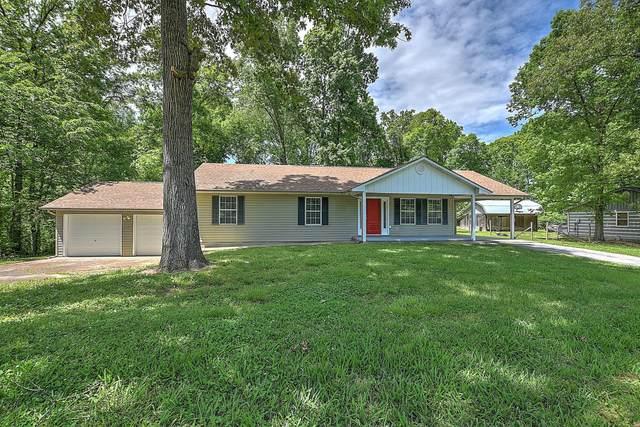 300 Humbert Lane, Mosheim, TN 37818 (MLS #9907974) :: Conservus Real Estate Group
