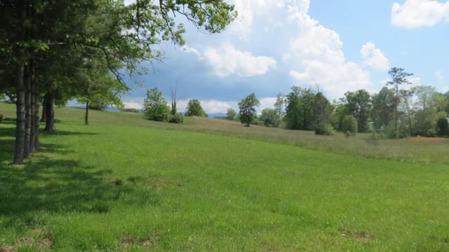 360 Mitchell Road, Chuckey, TN 37641 (MLS #9908006) :: Conservus Real Estate Group