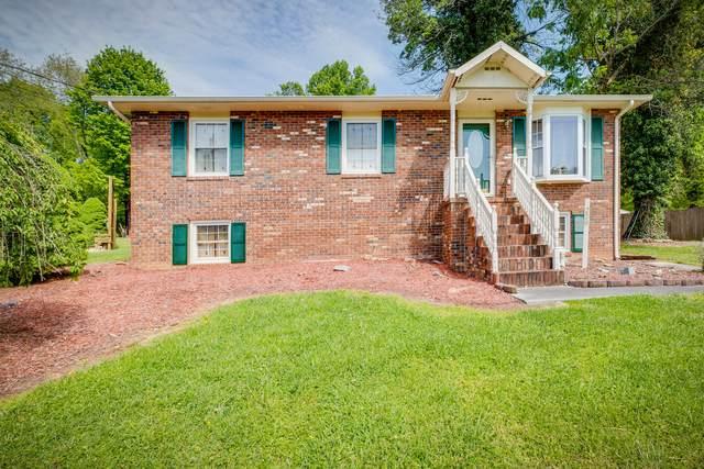 229 Tallman Drive, Blountville, TN 37617 (MLS #9908009) :: Highlands Realty, Inc.