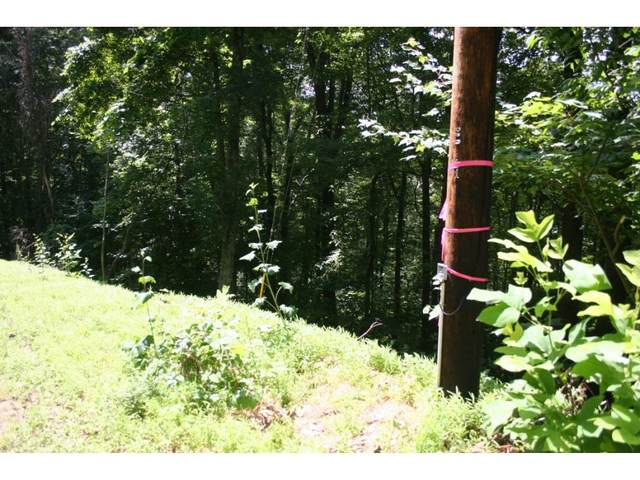 Tbd Pinecrest Street, Mountain City, TN 37683 (MLS #9908045) :: Highlands Realty, Inc.