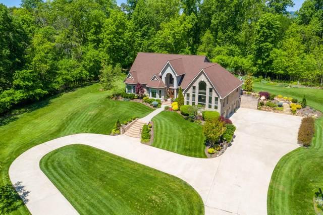 222 Southwood Drive, Kingsport, TN 37664 (MLS #9908046) :: Highlands Realty, Inc.