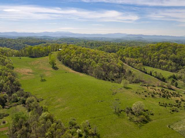 Tbd Rocky Springs Road, Piney Flats, TN 37686 (MLS #9908054) :: The Baxter-Milhorn Group
