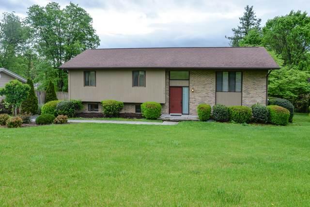 115 Bramm Road, Bristol, TN 37620 (MLS #9908103) :: Highlands Realty, Inc.